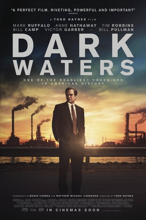 Dark Waters: The Cost of Being a Hero